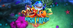How to play Fish Catch?